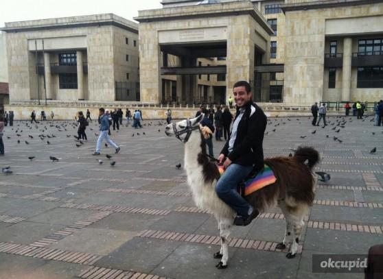 chris_llama